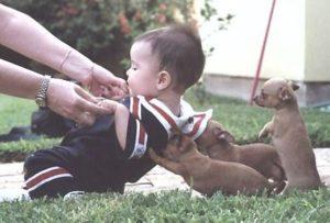 動物と赤ちゃん